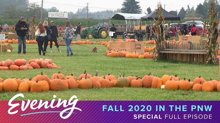 9 activities to celebrate a socially-distant fall in the Pacific Northwest!
