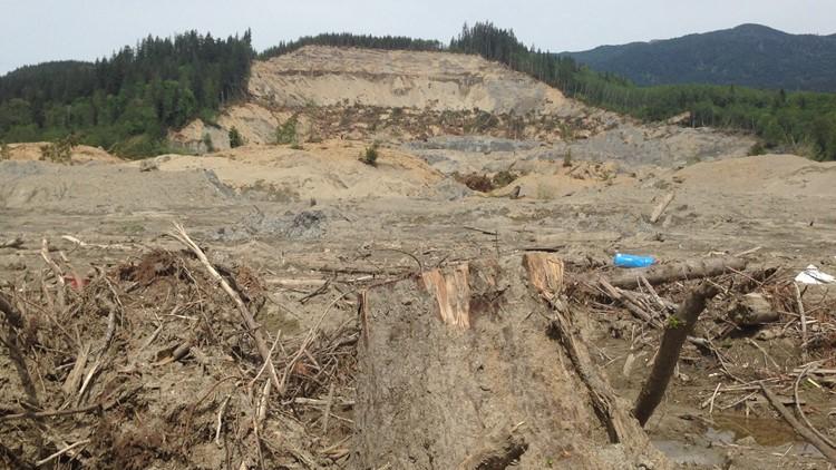 2014 Oso landslide