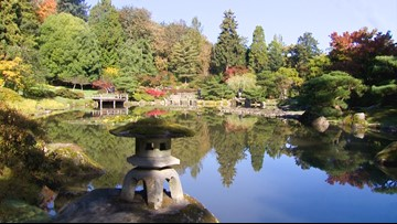 The Seattle Japanese Garden bursts with color in the fall
