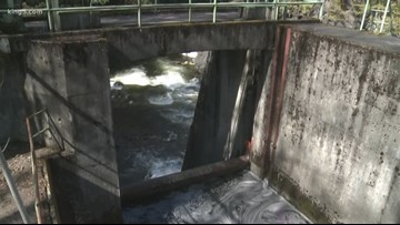 Bellingham to remove dam for salmon habitat restoration project