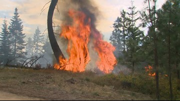 Washington unveils plan to better prevent and respond to wildfire