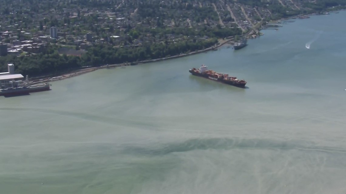 Commencement Bay clouded by 'glacial flour'