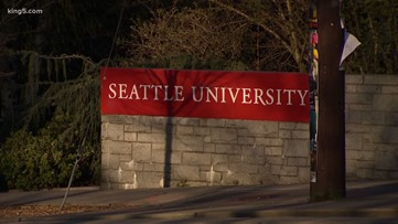 Seattle U Law Students Helping Domestic Violence Survivors File Protection Orders King5 Com