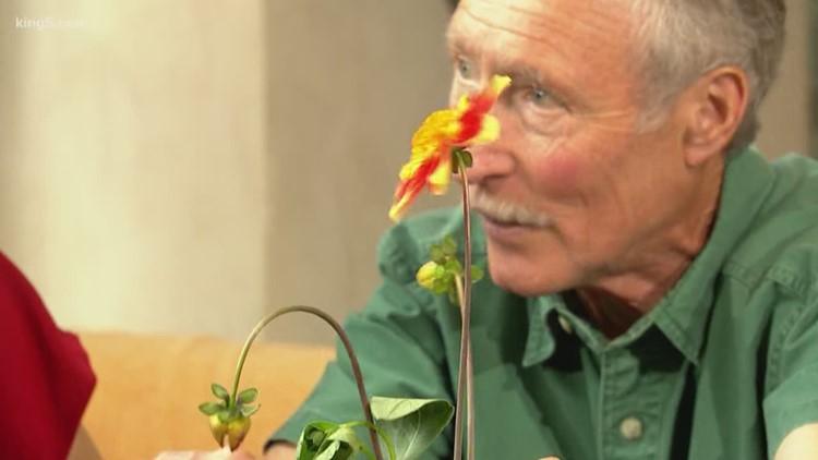 Ask an expert: Gardening with Ciscoe