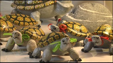 Gig Harbor man rewards acts of kindness with turtles