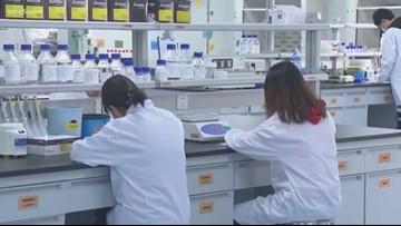 Coronavirus: what's being done?
