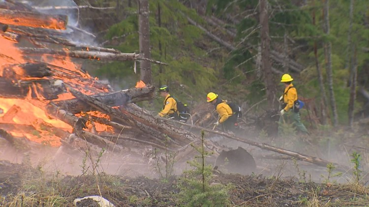 Western Washington firefighters train for wildfire season as hotter, drier weather approaches