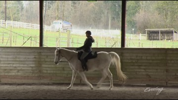 Urban Herd in Snohomish is ride sharing for horse lovers - KING 5 Evening