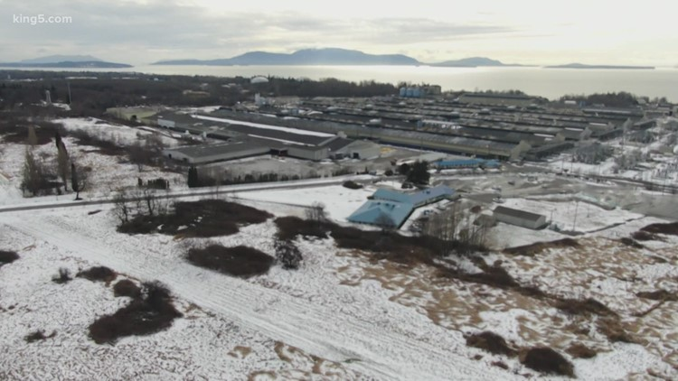 Laid off Ferndale smelter worker fights through plant closure, pandemic