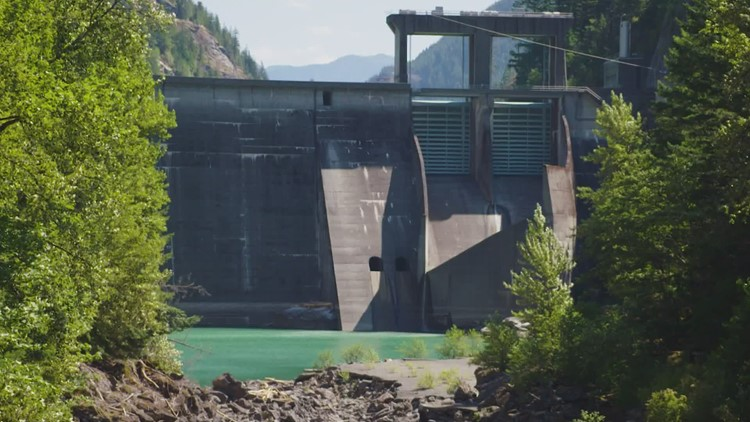 Washington's Sauk-Suiattle Indian Tribe sues Seattle City Light over Skagit River dams