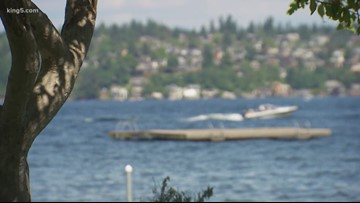 14-year-old boy dies after Lake Washington swimming accident