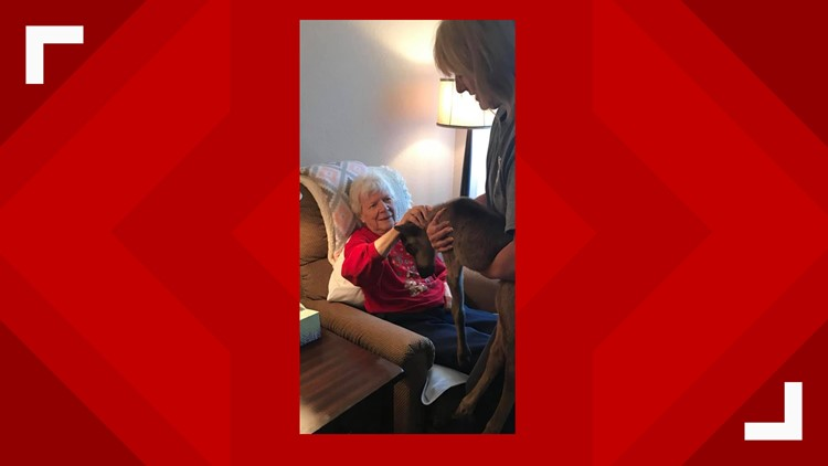 Baby from Leavenworth Reindeer Farm visits assisted living center