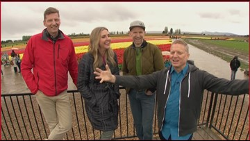 Evening's Guide to the Skagit Valley Tulip Festival, Full Episode