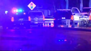 Hit-and-run suspect killed by Kent police during early-morning chase
