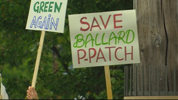Volunteers hope King County funding, donations will save Ballard's largest community garden