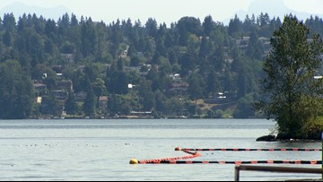Magnuson Beach in Seattle closed after bacteria detected