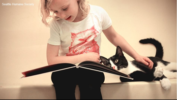 Cuties reading to kitties is a win-win for literacy and socialization