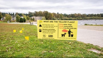 Kirkland tackles dog poop problem with outreach campaign