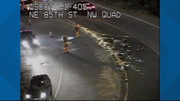 Someone lost their noodles on I-405 ramp in Kirkland