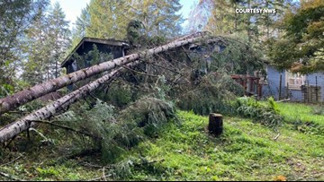 Witnesses describe rare tornado that touched down in Shelton Friday