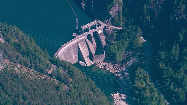 Tribes and government agencies accuse Seattle City Light of using 'flawed' science on Skagit River dams