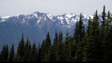 Man who broke into cars at Washington national parks gets prison time