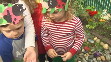 Ladybug release for Earth Day at Seattle schoolyards