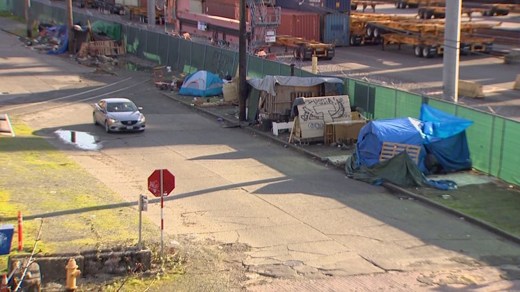 Seattle group pushes ballot measure to build housing for homeless, ban encampments in parks