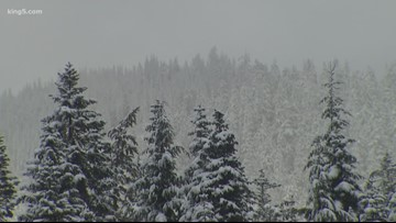 Snoqualmie Pass pummeled with 82 inches of fresh snow