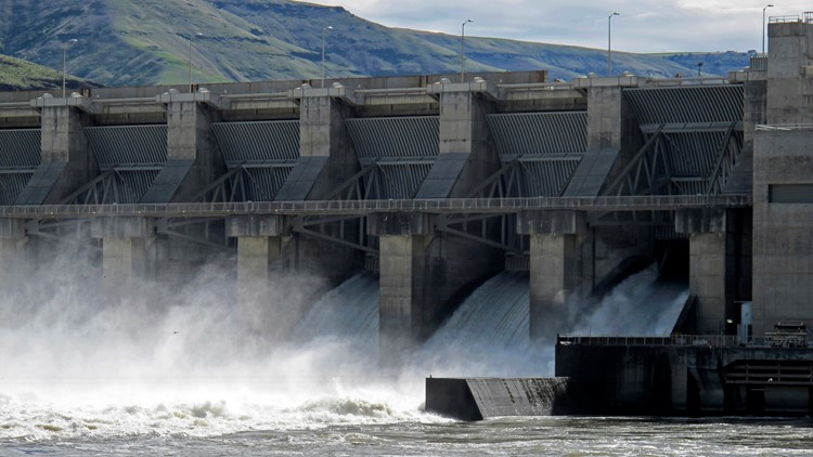 Conservation groups call for removal of lower Snake River Dams to save salmon, orca