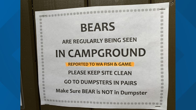Bear sightings increase near campgrounds