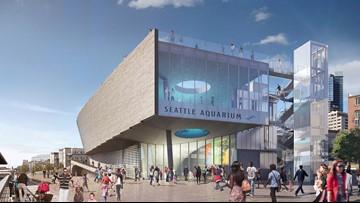 Seattle City Council approves $34 million for Seattle Aquarium expansion