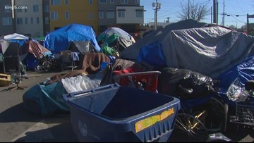 Seattle City Council approves Regional Homelessness Authority