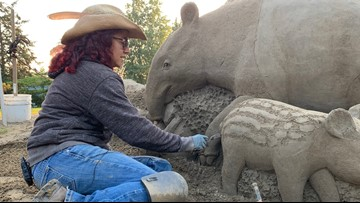 Tacoma artist sculpting special sand art for Point Defiance Zoo
