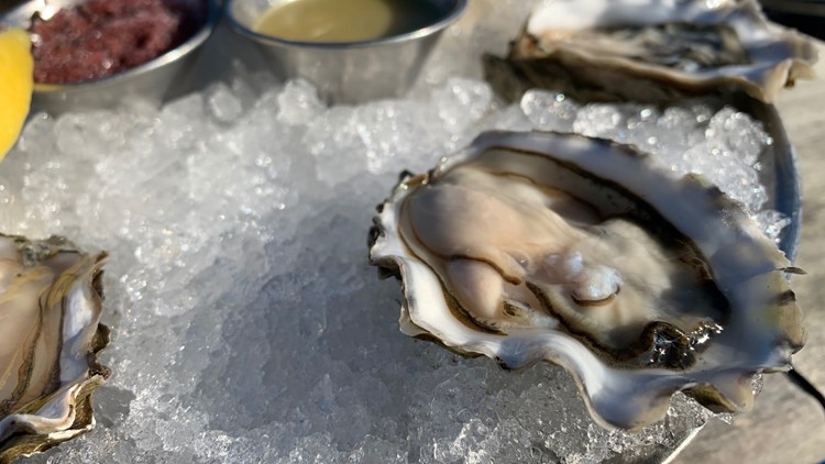Gig Harbor Oysters