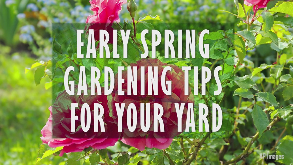 Early Spring Gardening Tips | King5.com