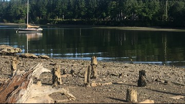 State may order clean-up at Bainbridge Island's Blakely Harbor