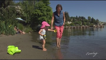 """Three """"secret beaches"""" in Seattle worth visiting - KING 5 Evening"""