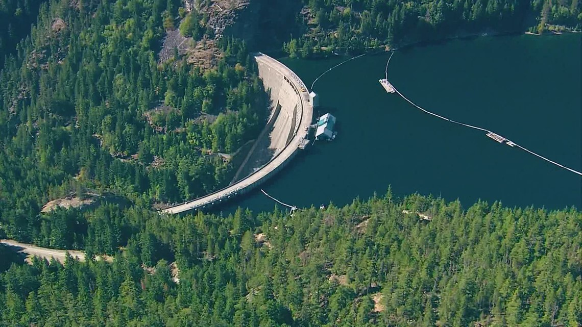 Skagit County: Seattle City Light 'getting away with' investing little for salmon recovery