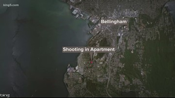 Man arrested in killing of WWU student at apartment in Bellingham