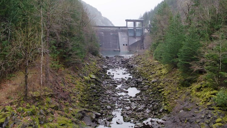 Seattle offers to change dam operations on 'sacred' stretch of the Skagit River