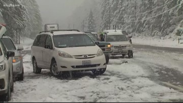 Downed trees, power lines close US 2 in Snohomish County