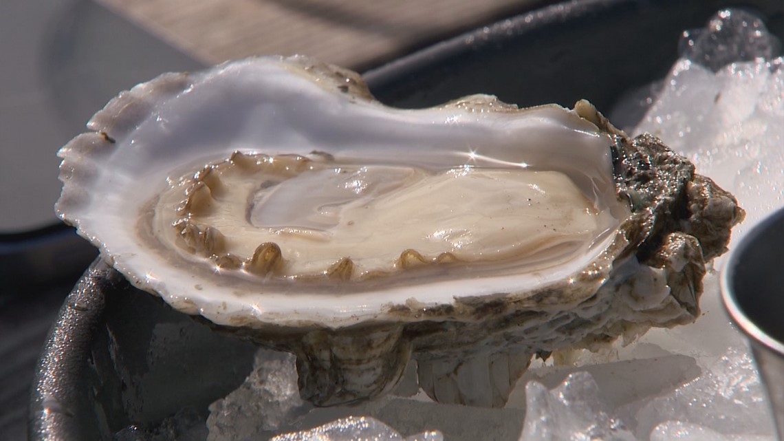 Taylor Shellfish Is An Oyster Oasis Right Off Chuckanut