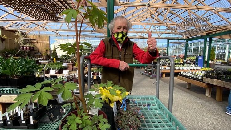 Ciscoe Morris picks his top 5 spring plants