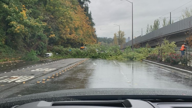WSDOT crews work to keep roads clear before trees cause dangerous situations
