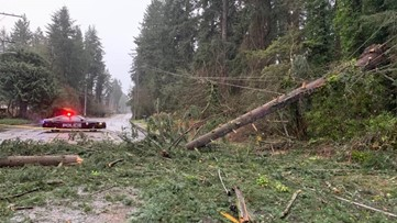 Tips: Safety around downed power lines