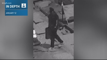 Recognize this person? Everett police need help finding alleged arsonist