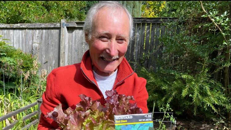 Ciscoe says plant greens now for plenty of fresh fall salads