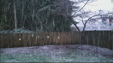 Rain/snow mix possible in lowlands off and on today