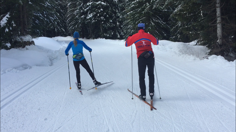 Professional Nordic skiers